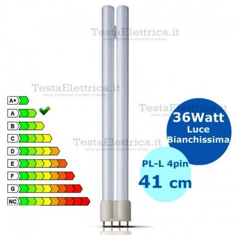 Lampada al Neon PL-L 36W 865 4P Okes