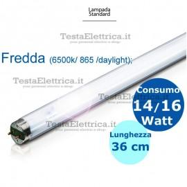 Tubo a neon 14/16 watt 36 cm  daylight  T8 TI Leuci