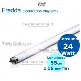 Neon T5 55 cm 24 watt Philips