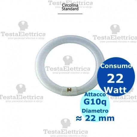 Circolina al neon 22 watt 21,5 cm T8 Standard Trifosforo Leuci
